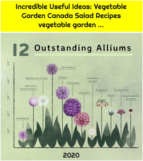 Incredible Useful Ideas: Vegetable Garden Canada Salad Recipes vegetable garden ...