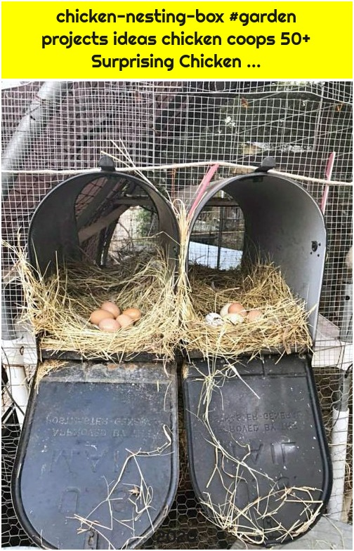 chicken-nesting-box #garden projects ideas chicken coops 50+ Surprising Chicken ...