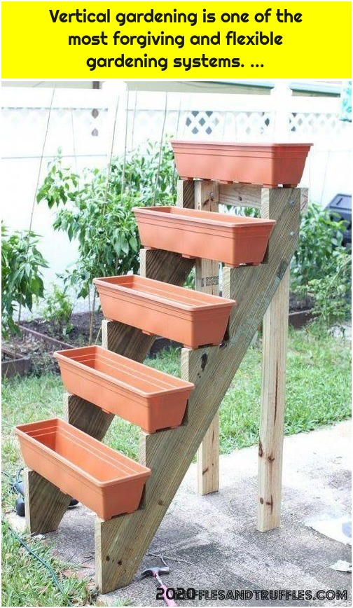 Vertical gardening is one of the most forgiving and flexible gardening systems. ...