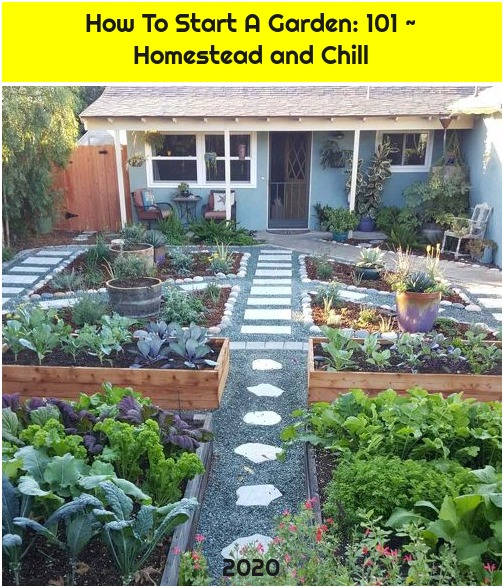 How To Start A Garden: 101 ~ Homestead and Chill