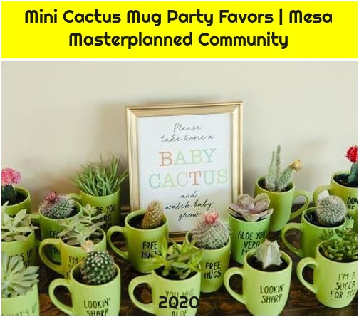 Mini Cactus Mug Party Favors | Mesa Masterplanned Community