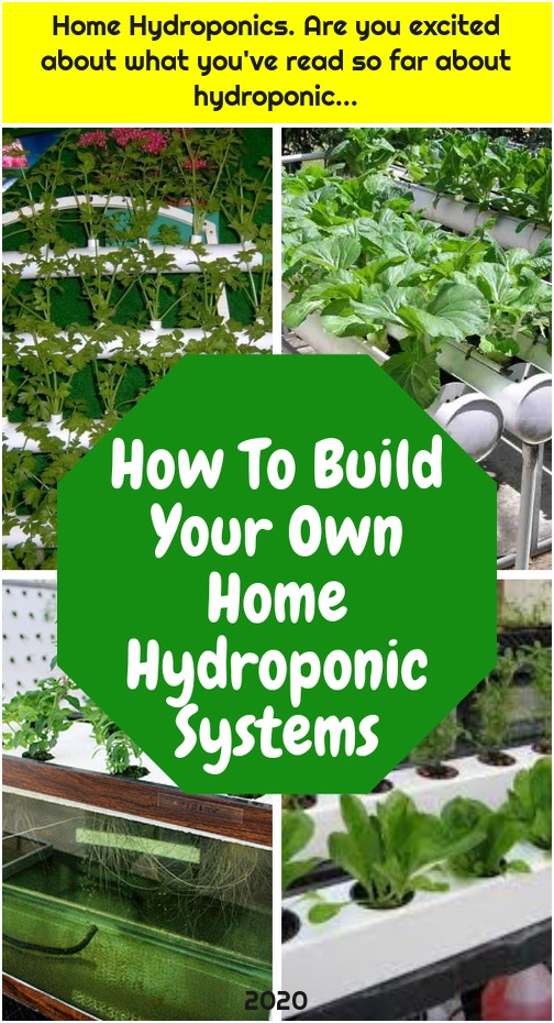Home Hydroponics. Are you excited about what you've read so far about hydroponic...