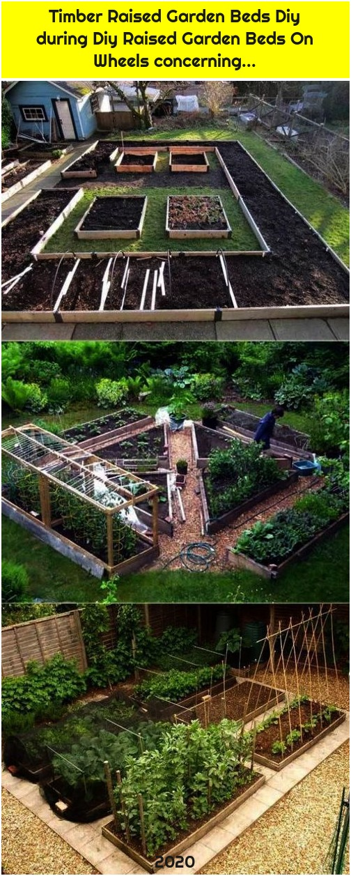 Timber Raised Garden Beds Diy during Diy Raised Garden Beds On Wheels concerning...