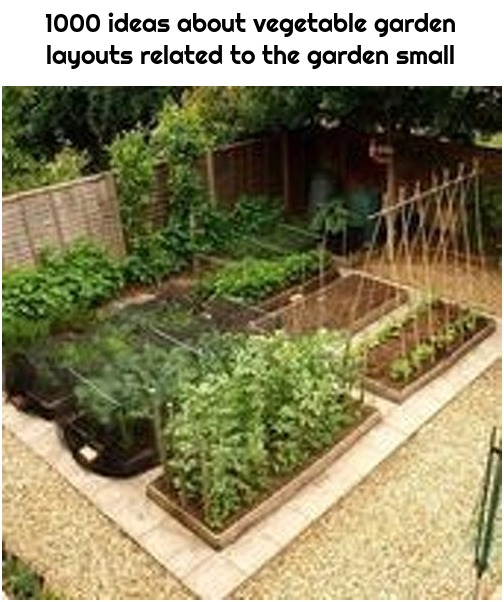 1000 ideas about vegetable garden layouts related to the garden small