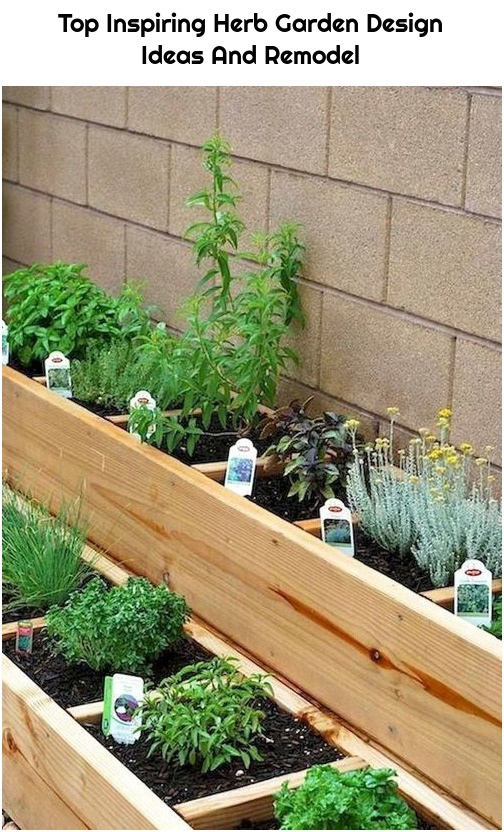 Top Inspiring Herb Garden Design Ideas And Remodel